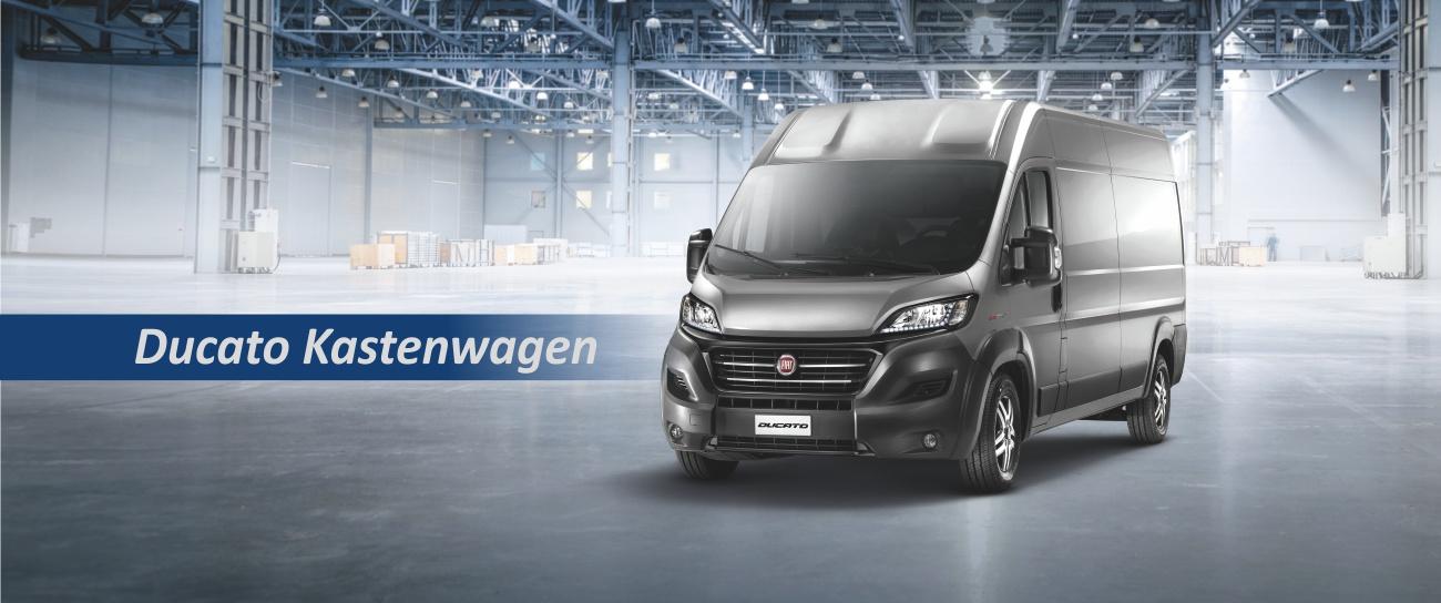 Fiat Professional Nutzfahrzeuge, Transporter, Kastenwagen, Pritsche, Kipper